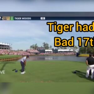 Tiger Woods Goes In The Water Twice At The 2019 Players 17th Hole