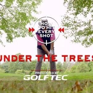 How To Hit Every Shot: Under the Trees
